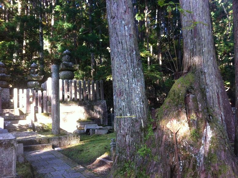 占い 高野山 パワーストーン パワースポット 関西 和歌山