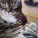 良いお金の遣い方